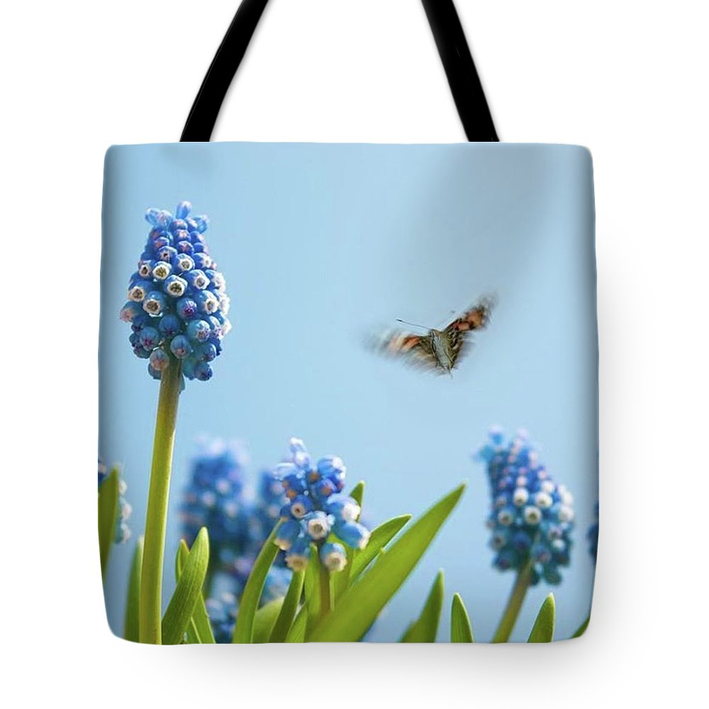 Insectsofinstagram Tote Bag featuring the photograph Something In The Air: Peacock by John Edwards