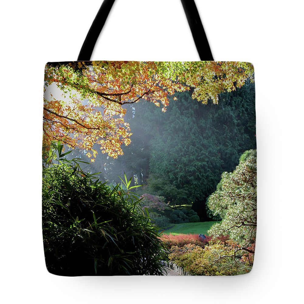 Outdoor Tote Bag featuring the photograph Song Of The Light 1. by Andrew Kim