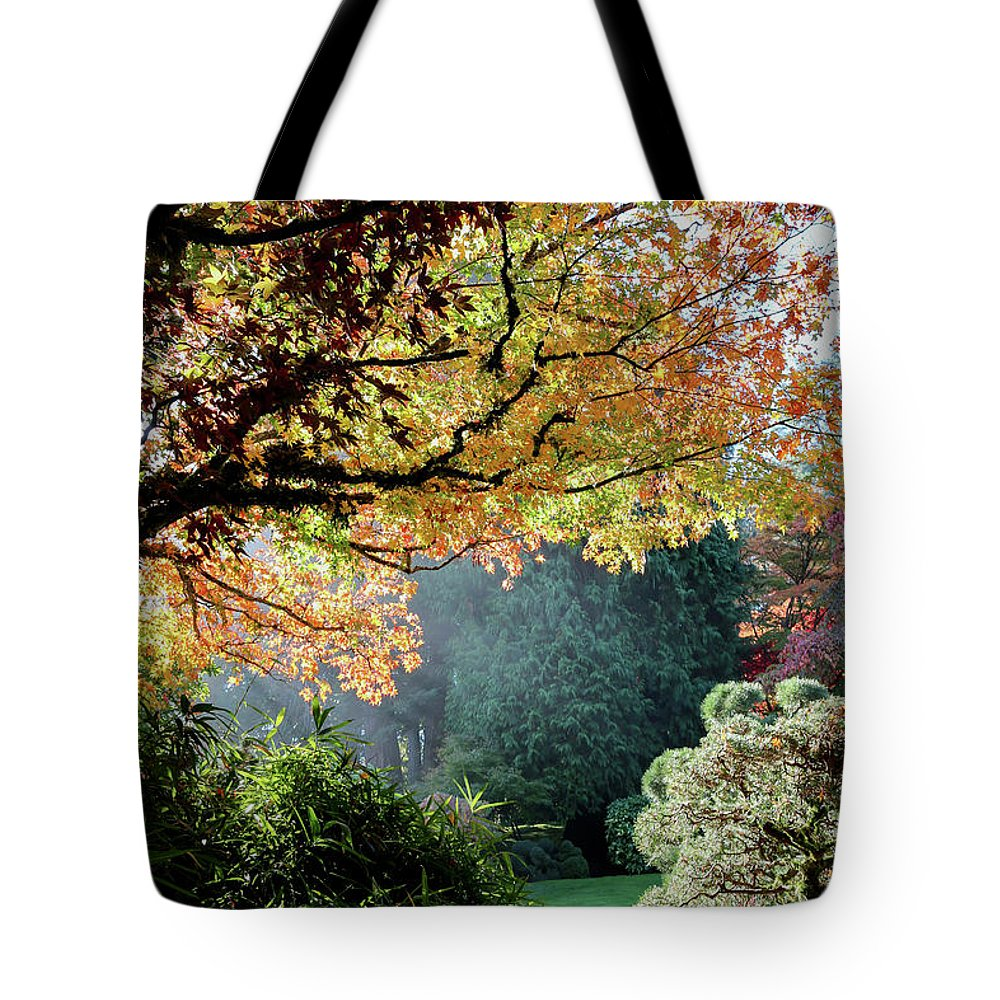 Outdoor Tote Bag featuring the photograph Song Of The Light. by Andrew Kim