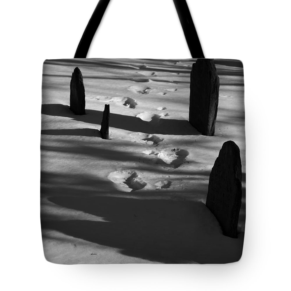 Grave Tote Bag featuring the photograph South For The Winter by Steven Natanson