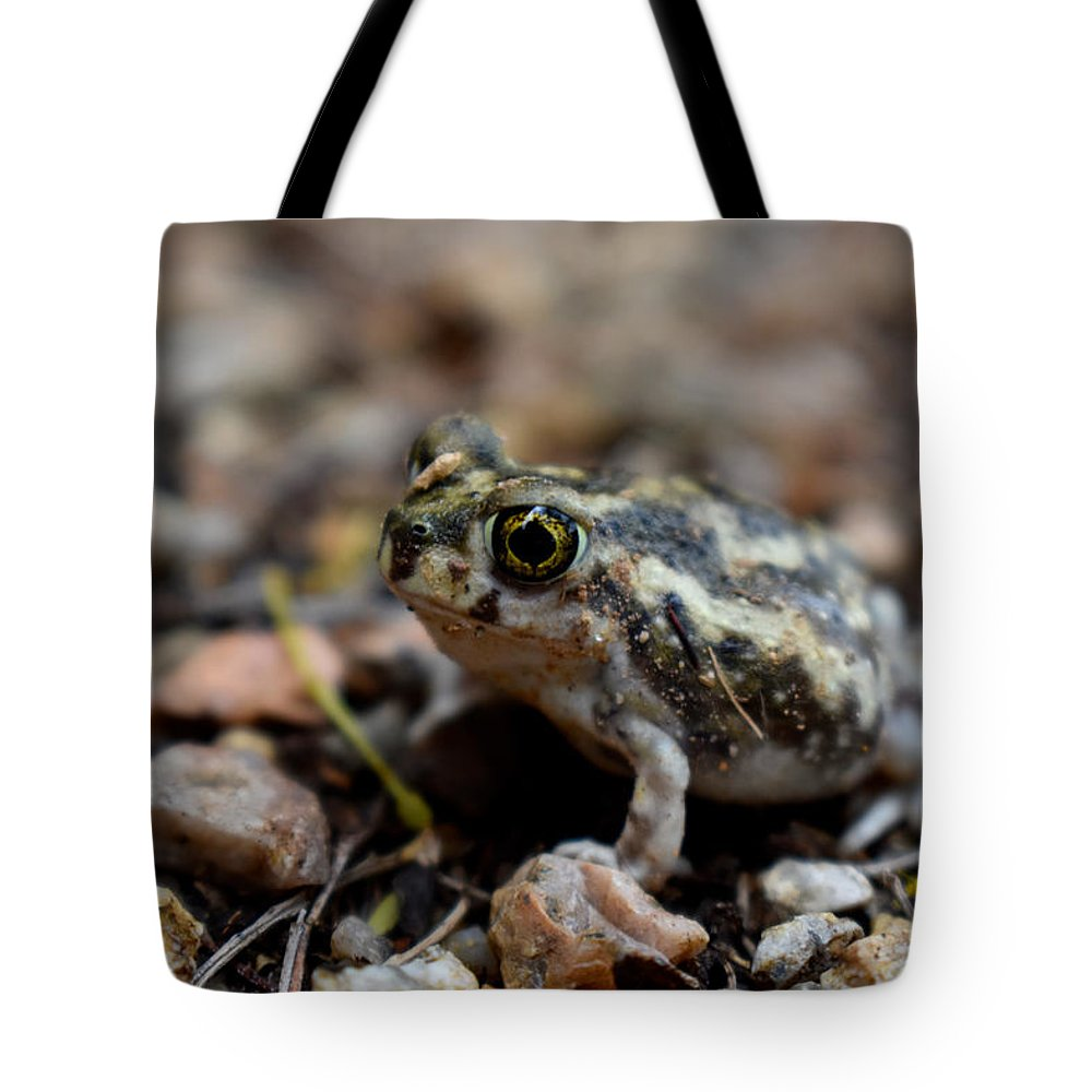 Toad Tote Bag featuring the photograph Spadefoot by Melisa Elliott