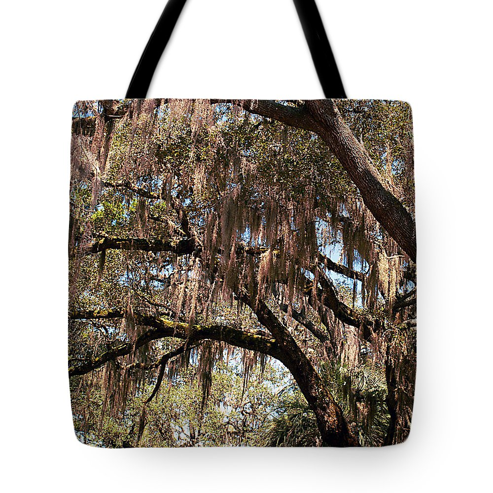 Spanish Moss Tote Bag featuring the photograph Spanish Moss by Bob Johnson