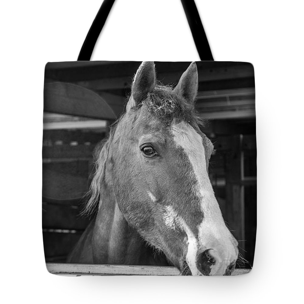Charger Tote Bag featuring the photograph Spara 15066b by Guy Whiteley