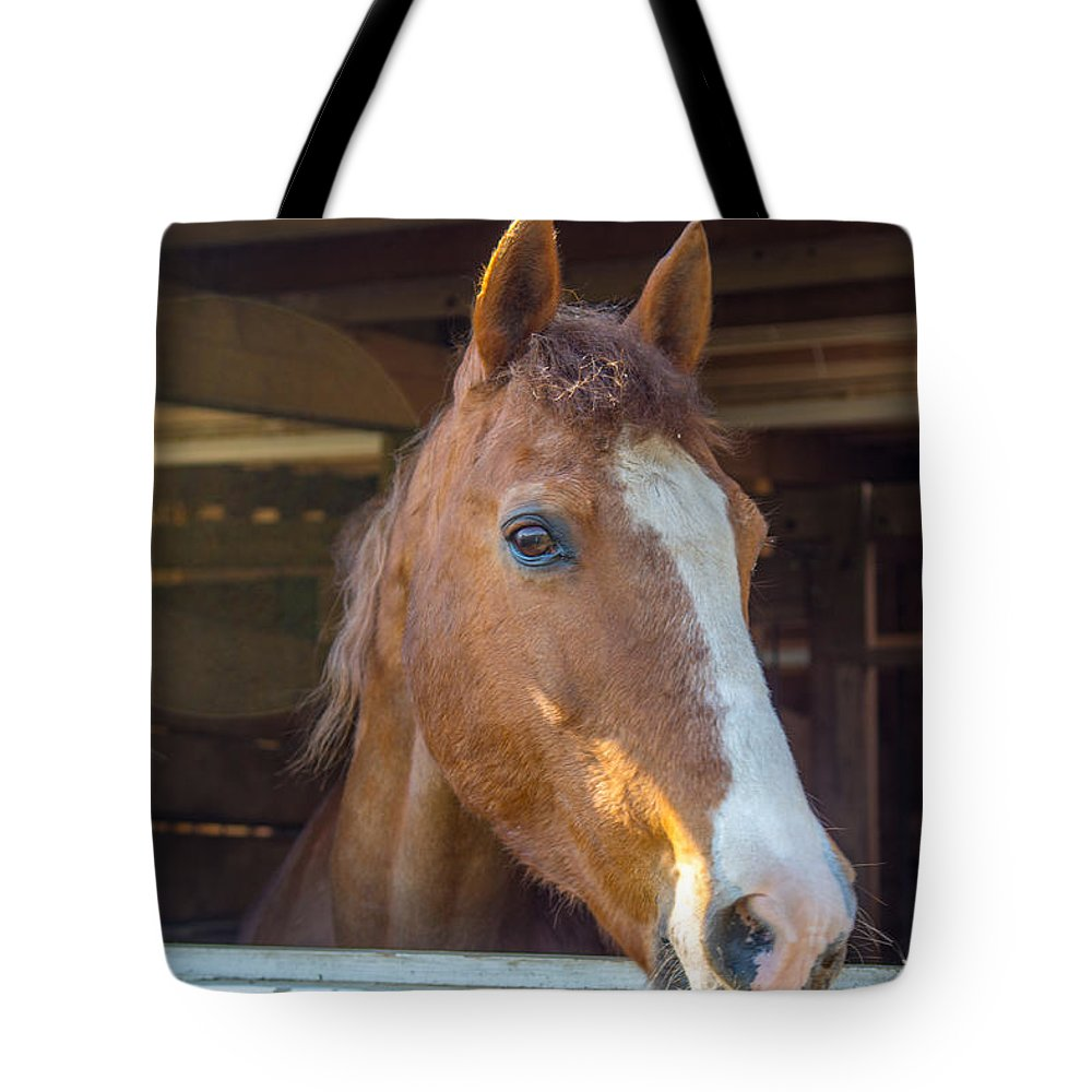 Charger Tote Bag featuring the photograph Spara 16066 by Guy Whiteley