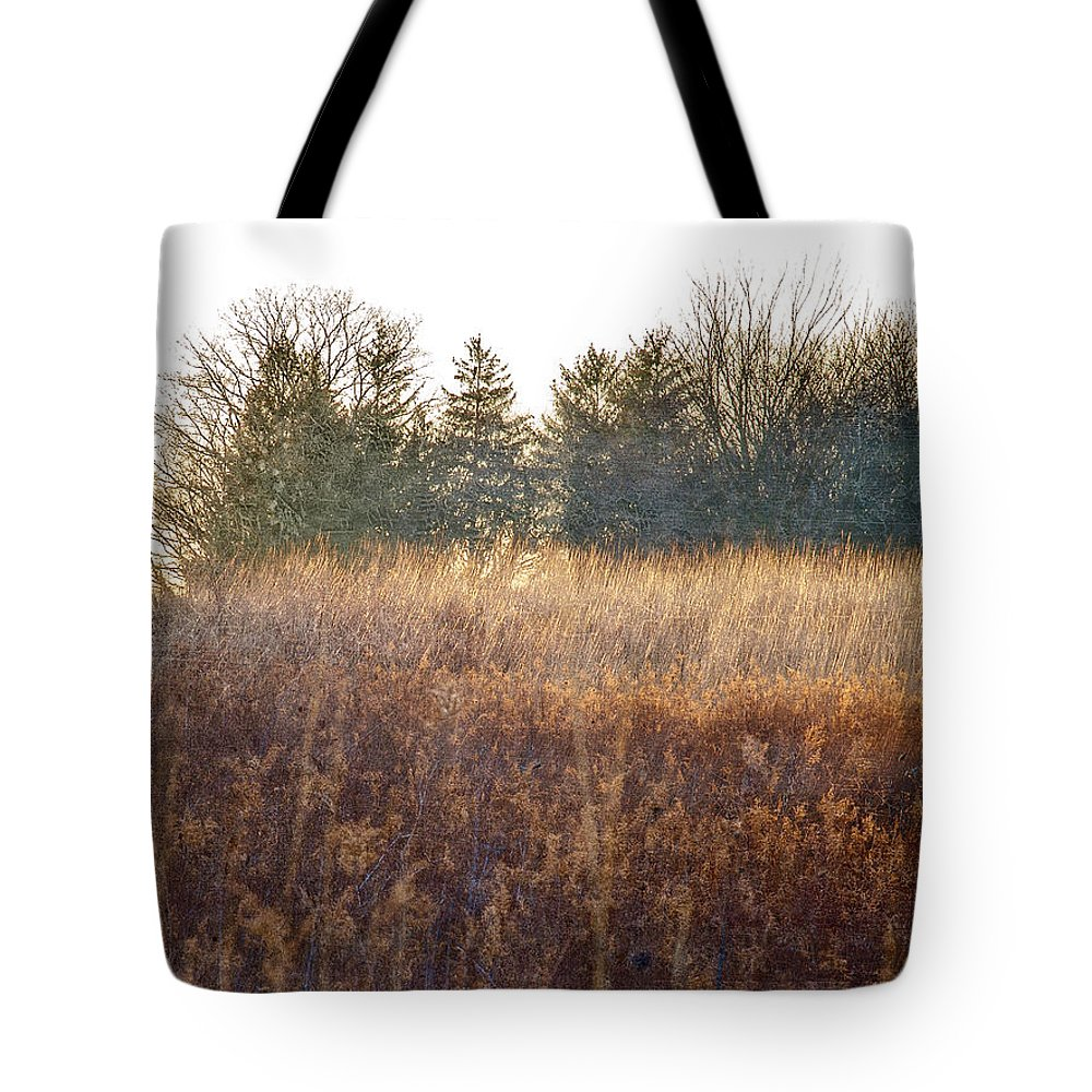 Field Tote Bag featuring the digital art Sparrows Carry Her Name by Will Jacoby Artwork