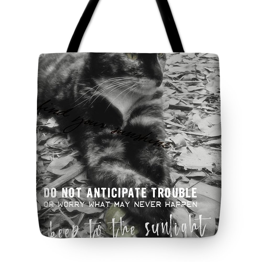 Cat Tote Bag featuring the photograph Sphinx Quote by JAMART Photography