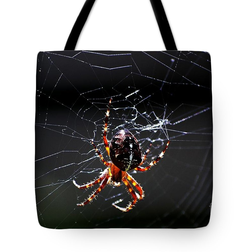 Digital Photo Tote Bag featuring the photograph Spider by David Lane