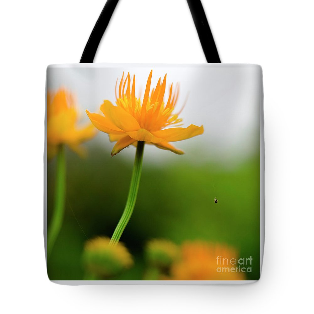 Spider Tote Bag featuring the photograph Spider by Edward Nekrasov