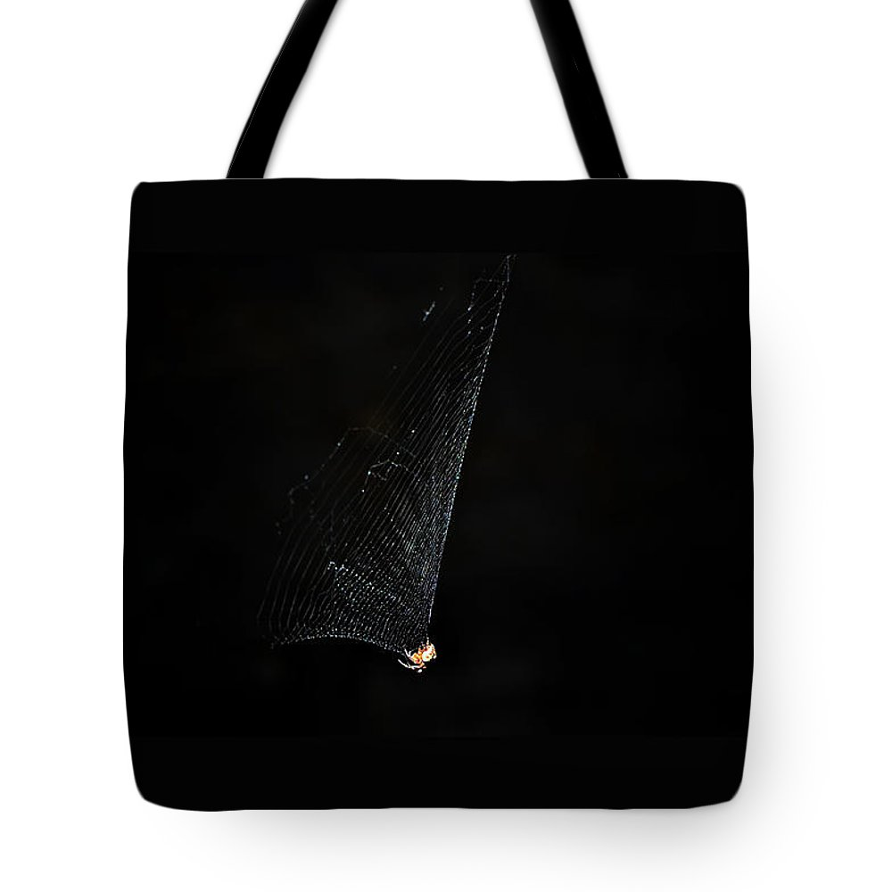 Spider Tote Bag featuring the photograph Spider by Kelly E Schultz