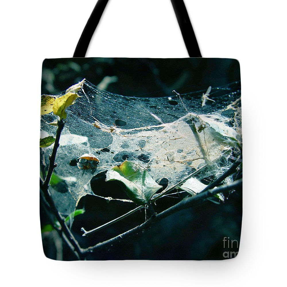Spider Tote Bag featuring the photograph Spider Web by Peter Piatt