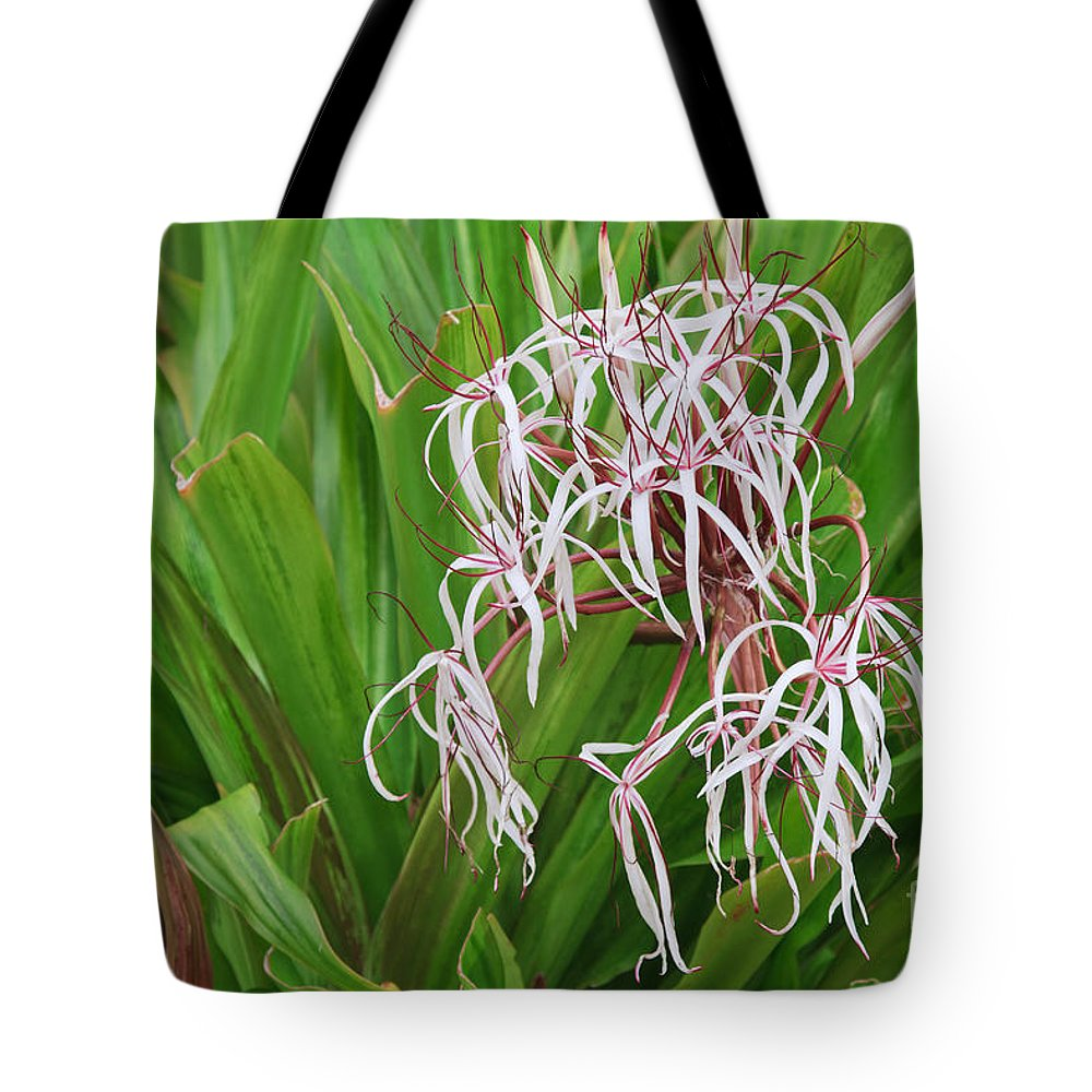 Crinum Tote Bag featuring the photograph Spider,lily by Jamie Gray