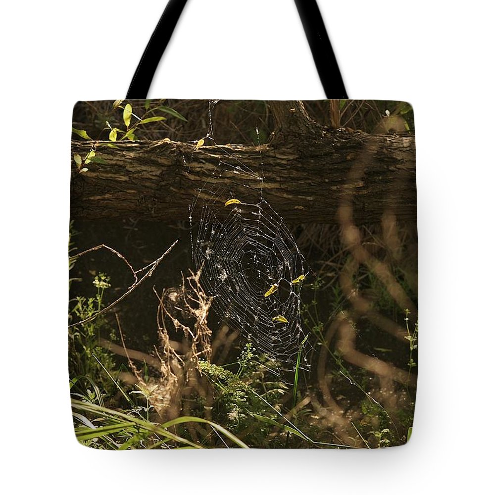 Linda Brody Tote Bag featuring the photograph Spiders Web In Sunlight In Peters Canyon by Linda Brody