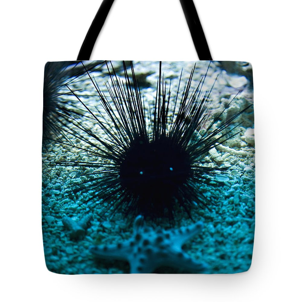 Aquarium Tote Bag featuring the photograph Spike by Marilyn Hunt