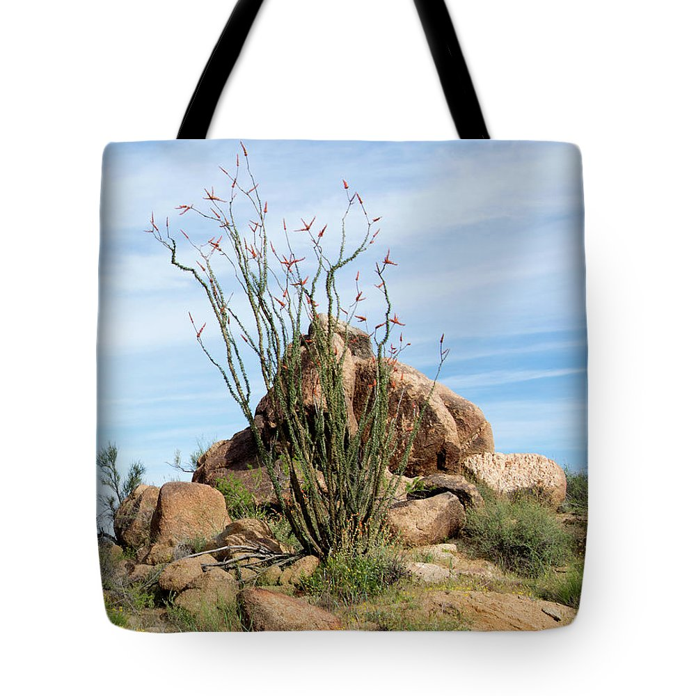 Spiny Cactus Wickenburg Arizona Tote Bag featuring the photograph Spiny Cactus East Of Wickenburg by Barbara Snyder