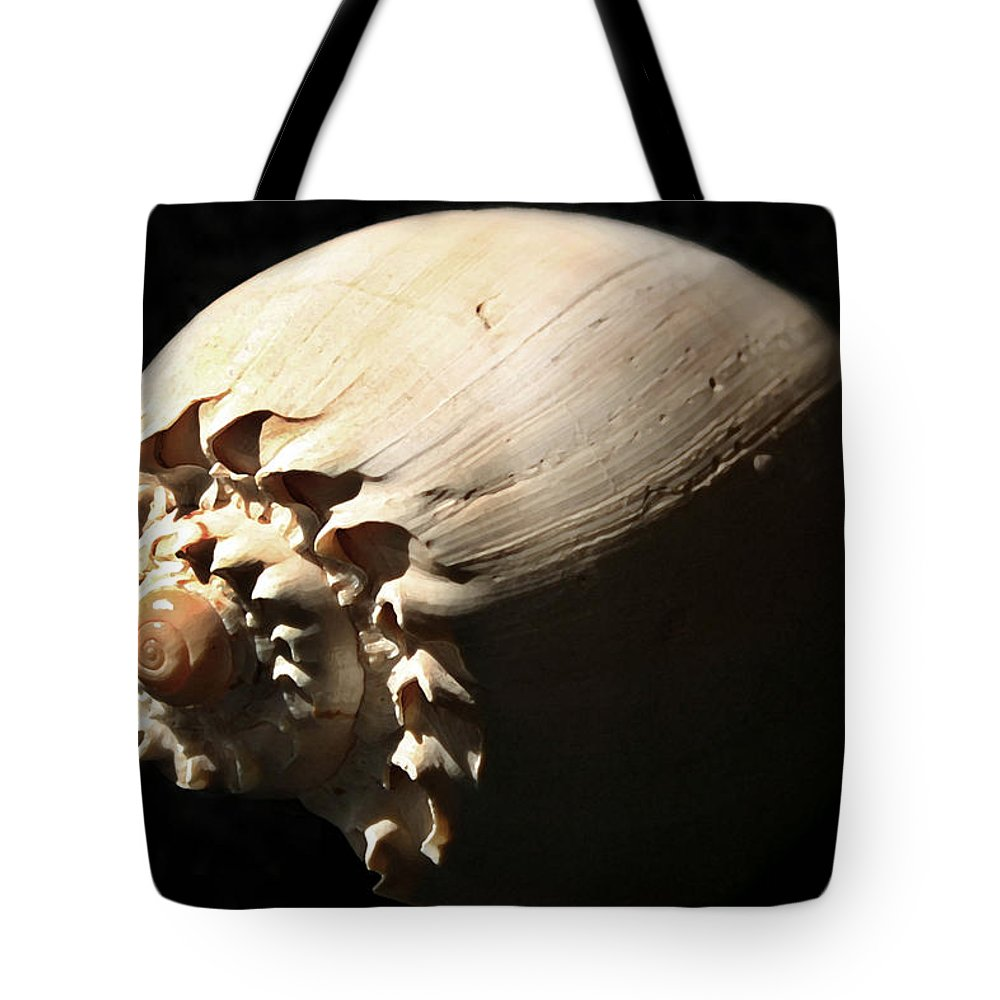 Shell Tote Bag featuring the photograph Spirals by Mary Haber