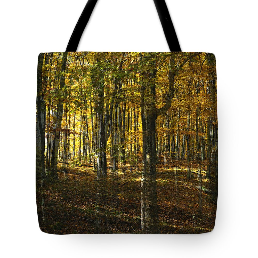 Woods Tote Bag featuring the photograph Spirits In The Woods by Tim Nyberg