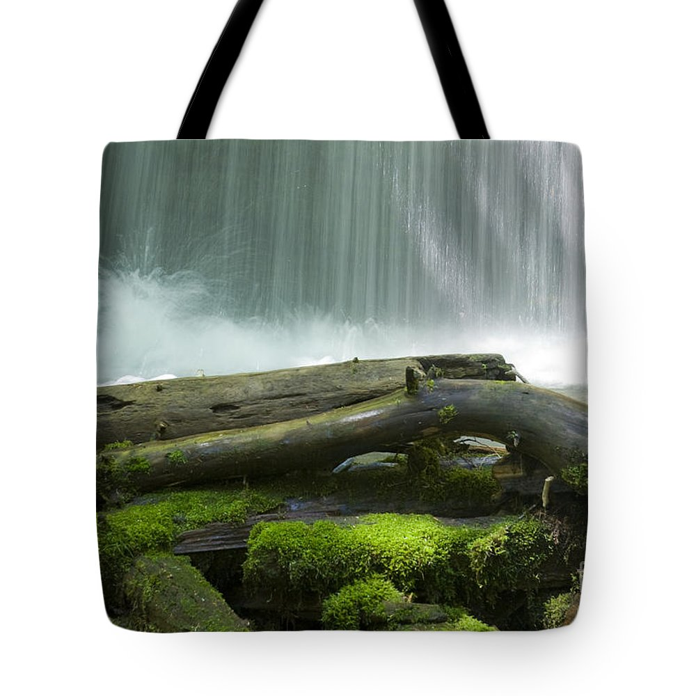 Idaho Tote Bag featuring the photograph Splash by Idaho Scenic Images Linda Lantzy