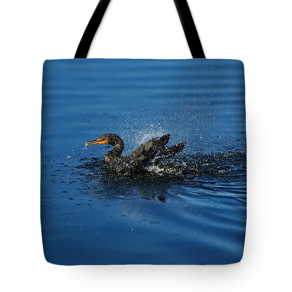 Animal Tote Bag featuring the photograph Splashing Cormorant by Rich Leighton