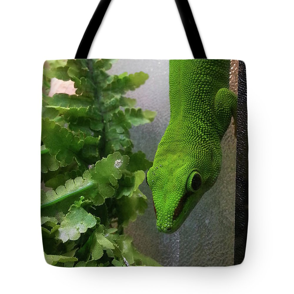 Six Tote Bag featuring the photograph Spotted Gecko by Stephenbw