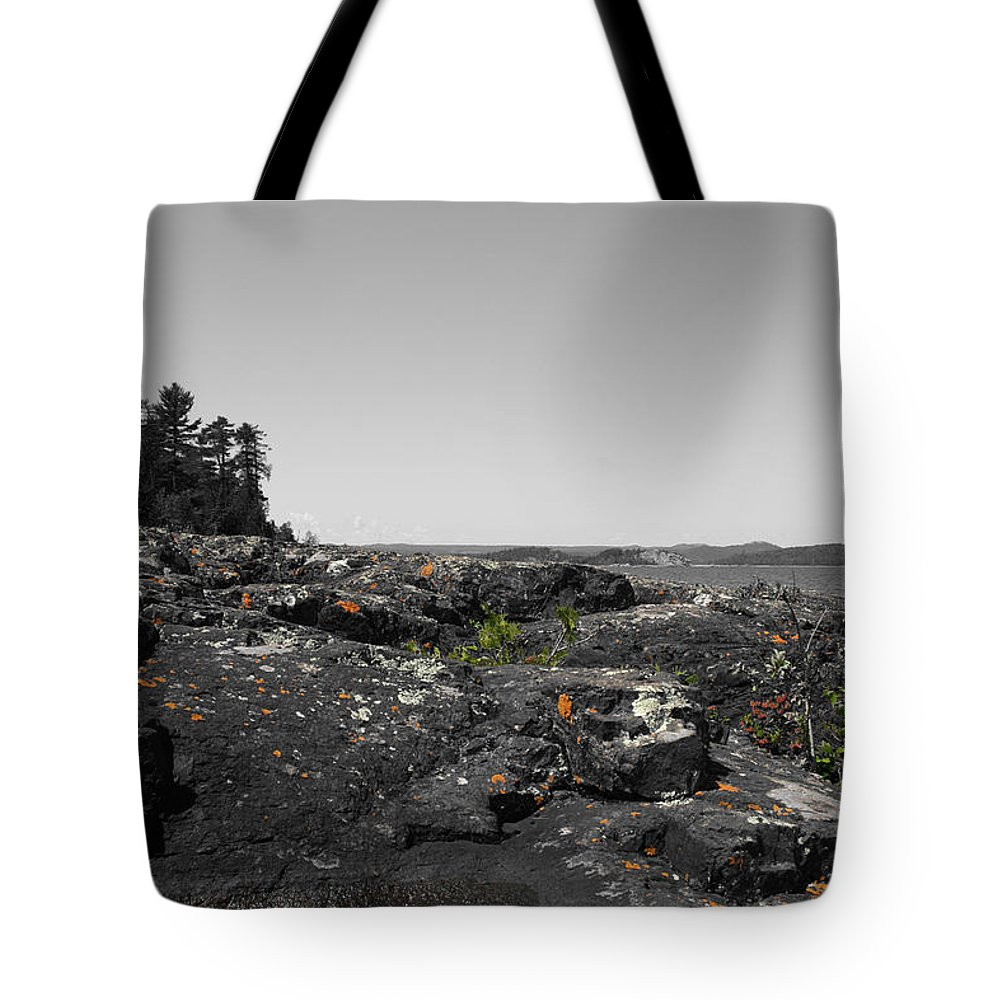 Landscape Tote Bag featuring the photograph Spotted Rocks by Dylan Punke