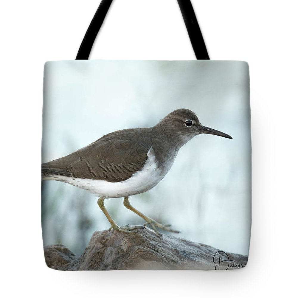 Florida Tote Bag featuring the photograph Spotted Sandpiper by Deborah Kainauskas
