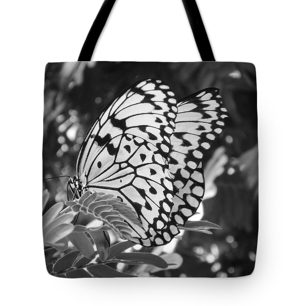 Photography Tote Bag featuring the photograph Spread You Wings And Fly by Shelley Jones