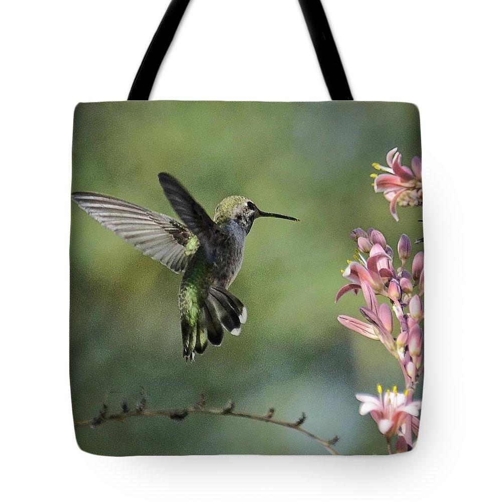 Anna's Hummingbird Tote Bag featuring the photograph Spread Your Wings by Saija Lehtonen