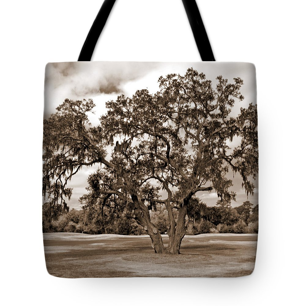 Canvas Tote Bag featuring the photograph Spreading Tree by Phill Doherty