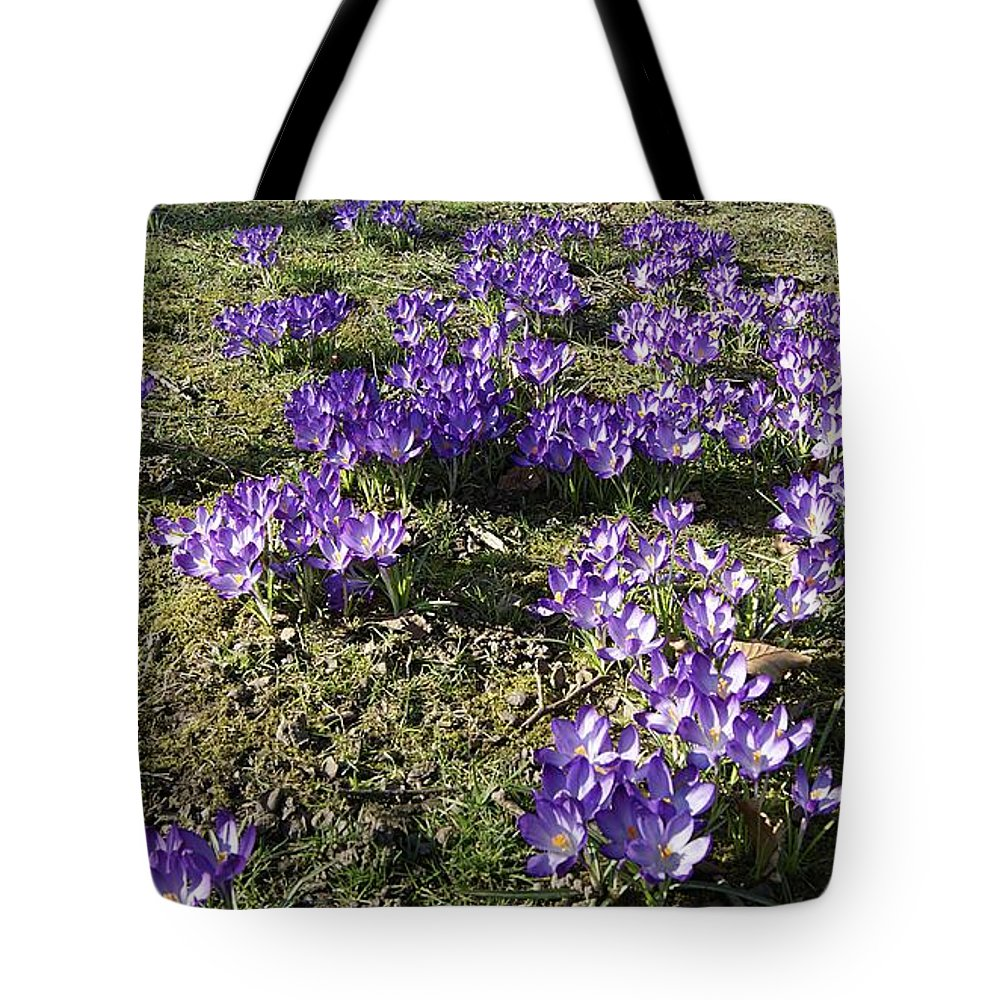 Spring Crocus Tote Bag featuring the photograph Spring 2 by LDS Dya