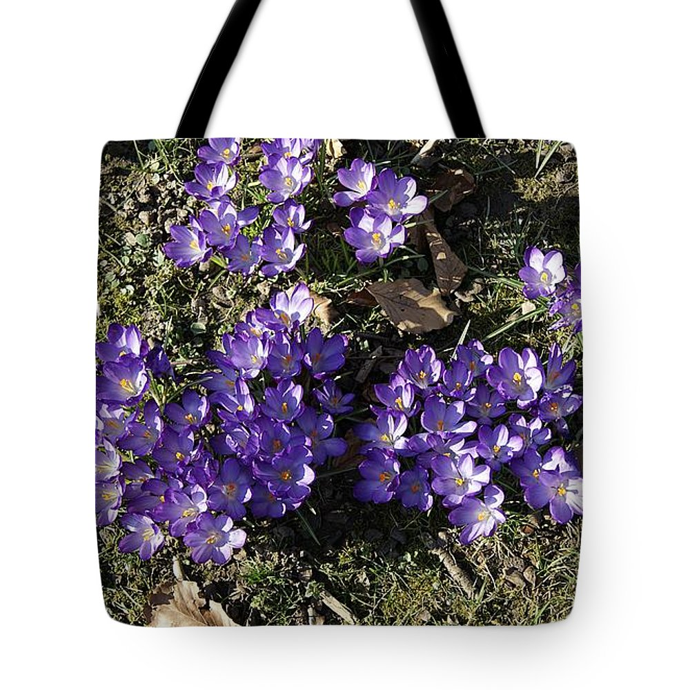 Spring Crocus Tote Bag featuring the photograph Spring 3 by LDS Dya