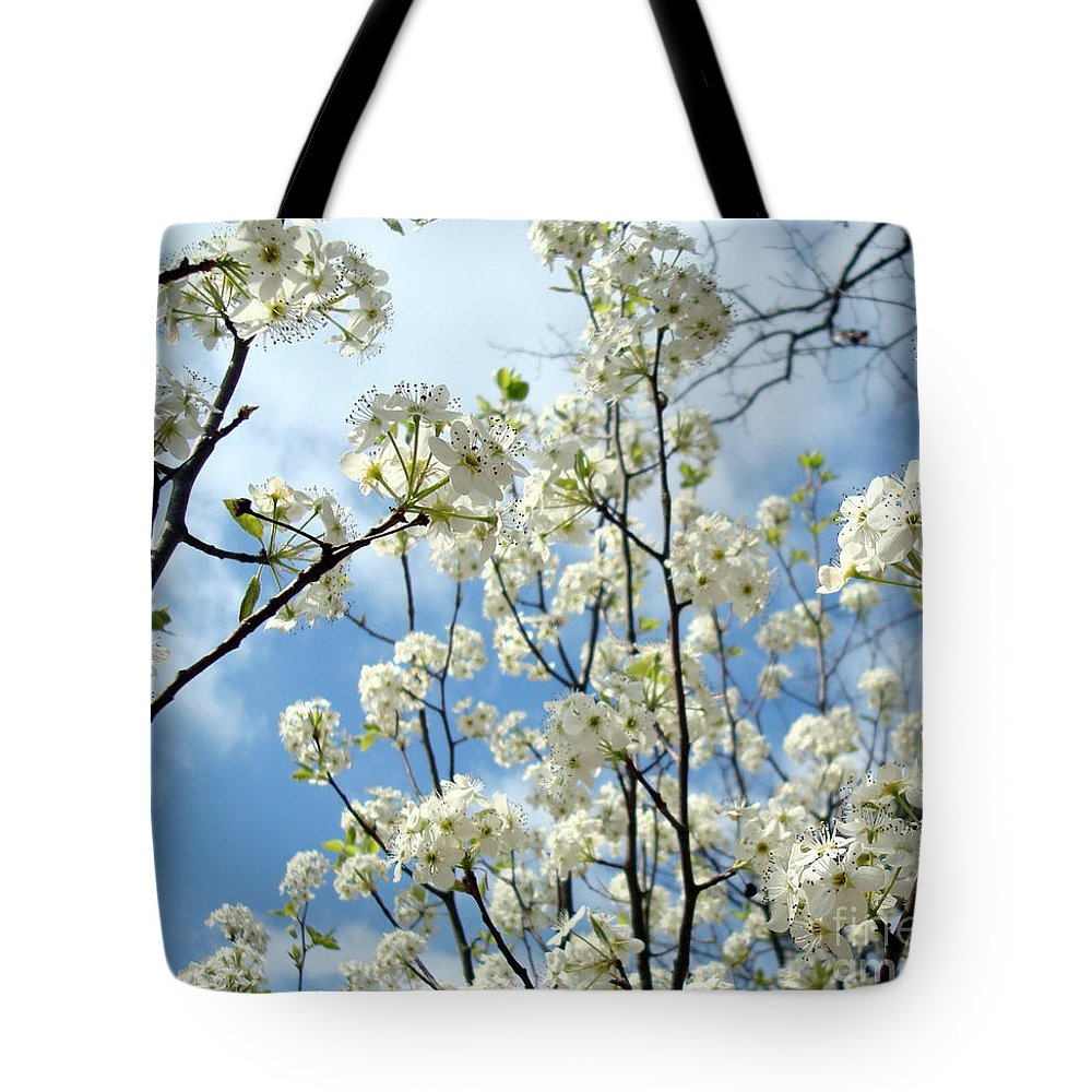 Trees Tote Bag featuring the photograph Spring Awakening by Kathy Bucari