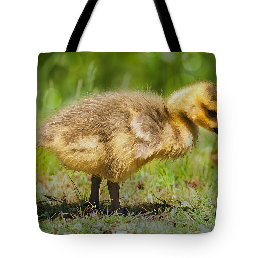 Goose Tote Bag featuring the photograph Spring Baby by Cathy Kovarik
