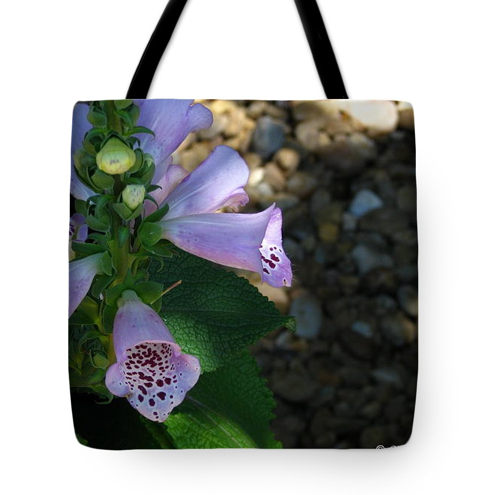 Art For The Wall...patzer Photography Tote Bag featuring the photograph Spring Bells by Greg Patzer