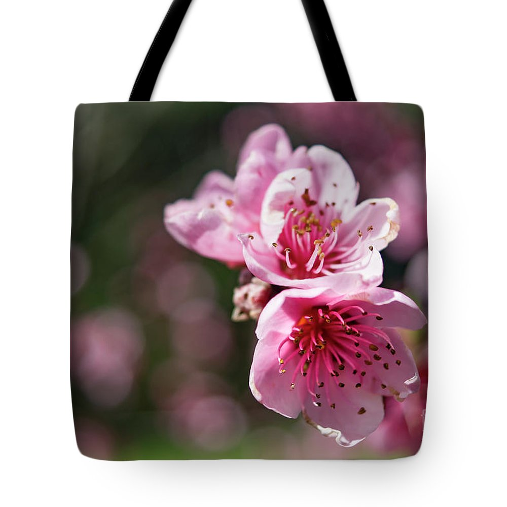 Cherry Blossoms Tote Bag featuring the photograph Spring Blossom by Cara Walton