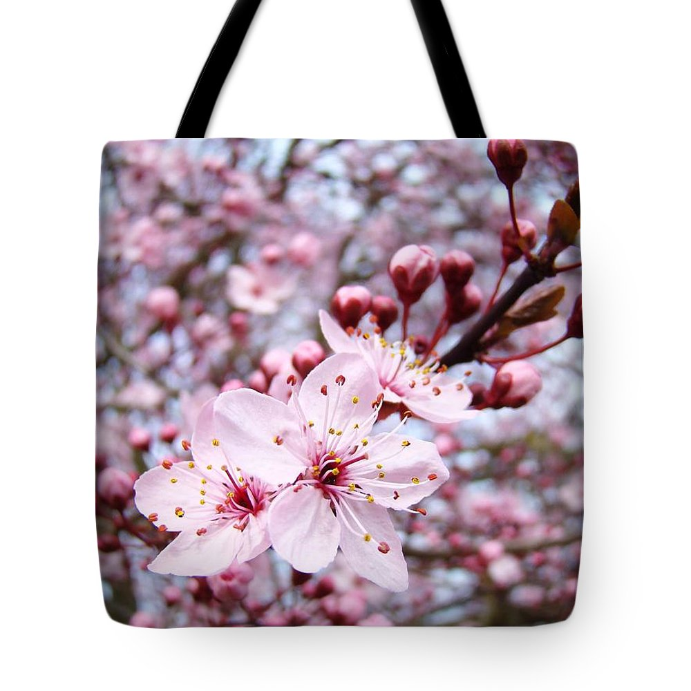 Blossom Tote Bag featuring the photograph Spring Blossoms Art Pink Tree Blossom Baslee Troutman by Baslee Troutman