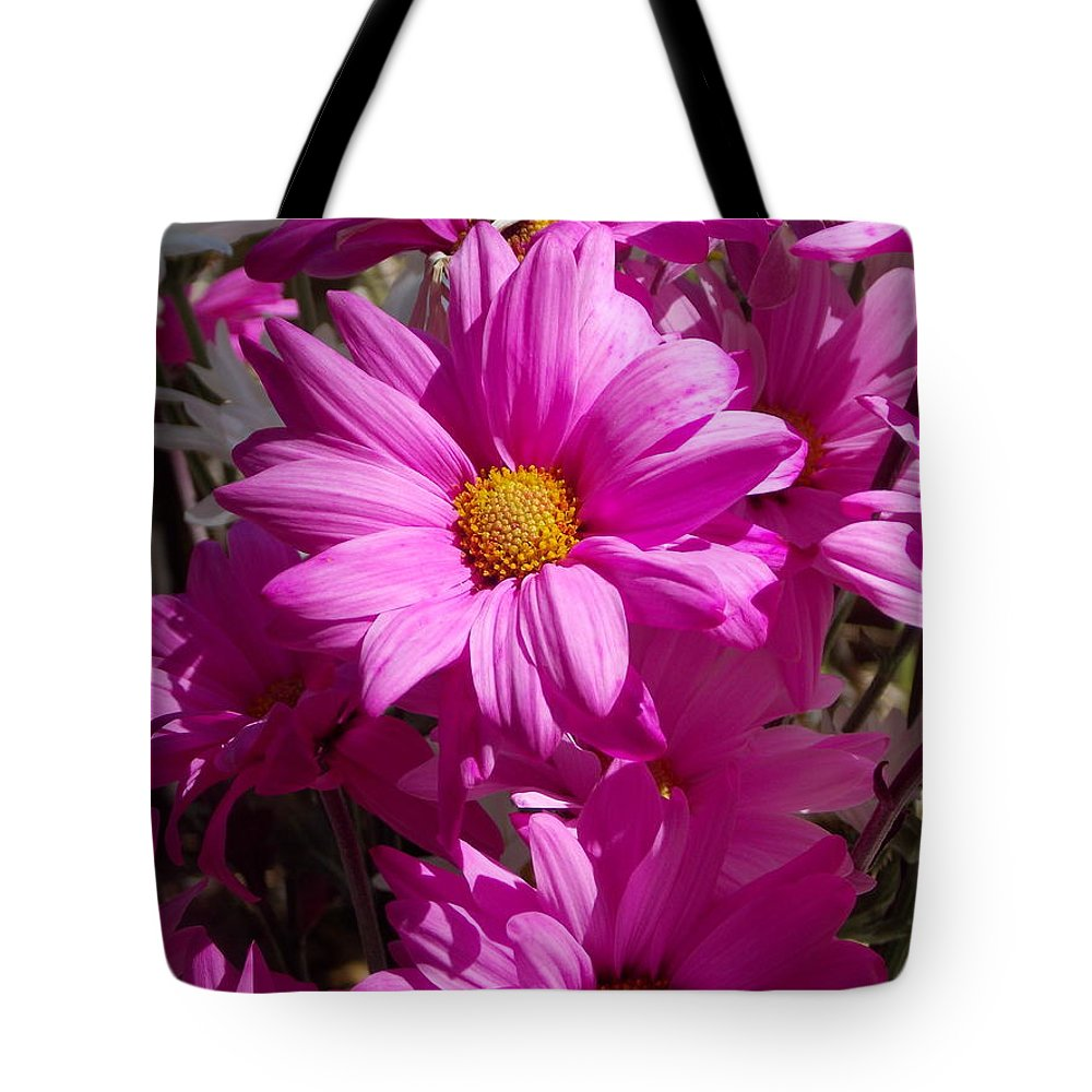 Daisy.flower Tote Bag featuring the photograph Spring by Bob Johnson