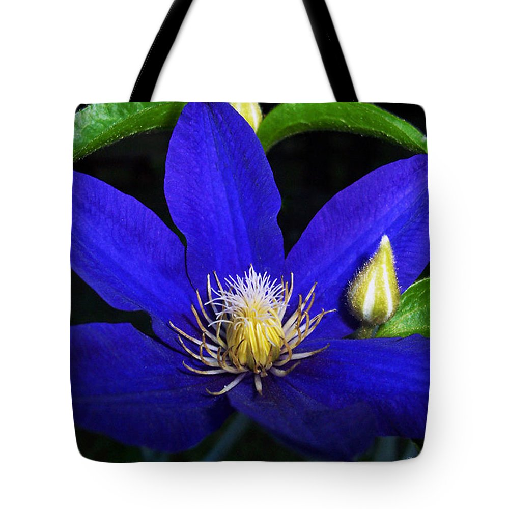 Spring Tote Bag featuring the photograph Spring Clematis by Terry Anderson
