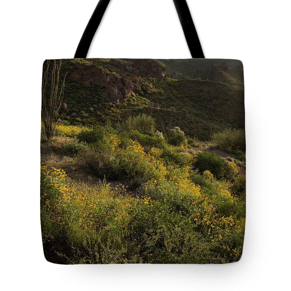Spring Tote Bag featuring the photograph Spring Color Carpet by Sue Cullumber