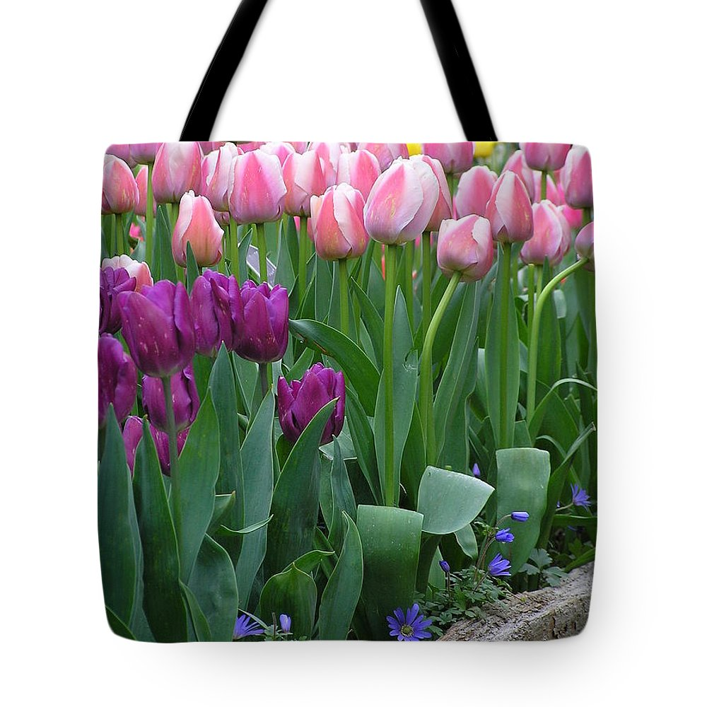 Tulips Tote Bag featuring the photograph Spring Colors by Louise Magno