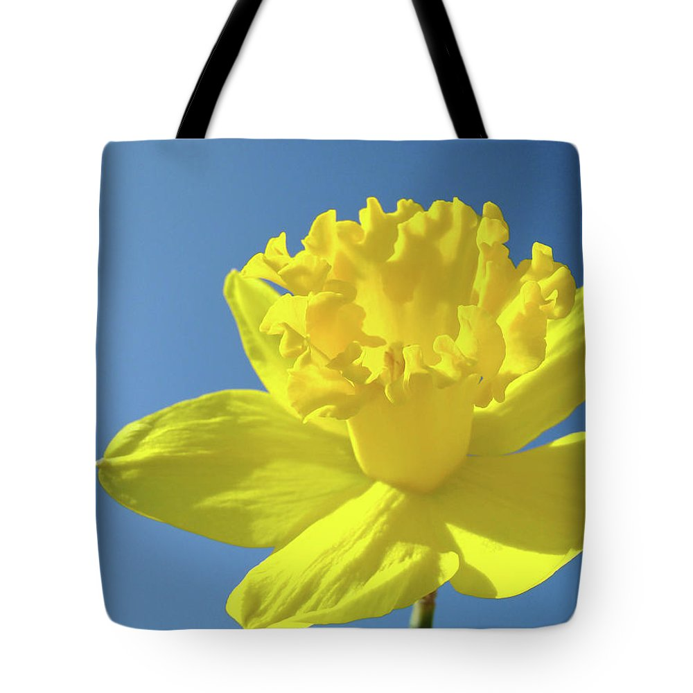 Sky Tote Bag featuring the photograph Spring Daffodil Flowers Art Prints Blue Sky Baslee Troutman by Baslee Troutman