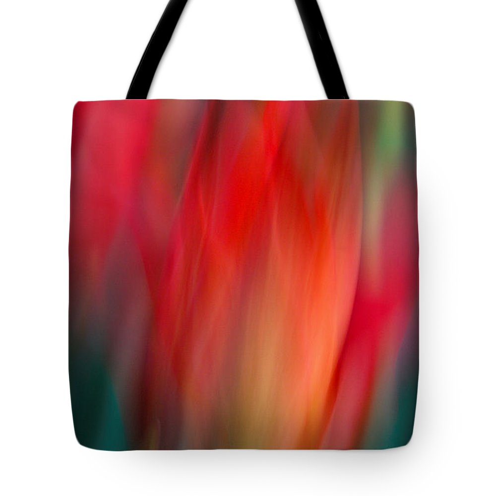 Tulip Tote Bag featuring the photograph Spring Fling by Neil Shapiro