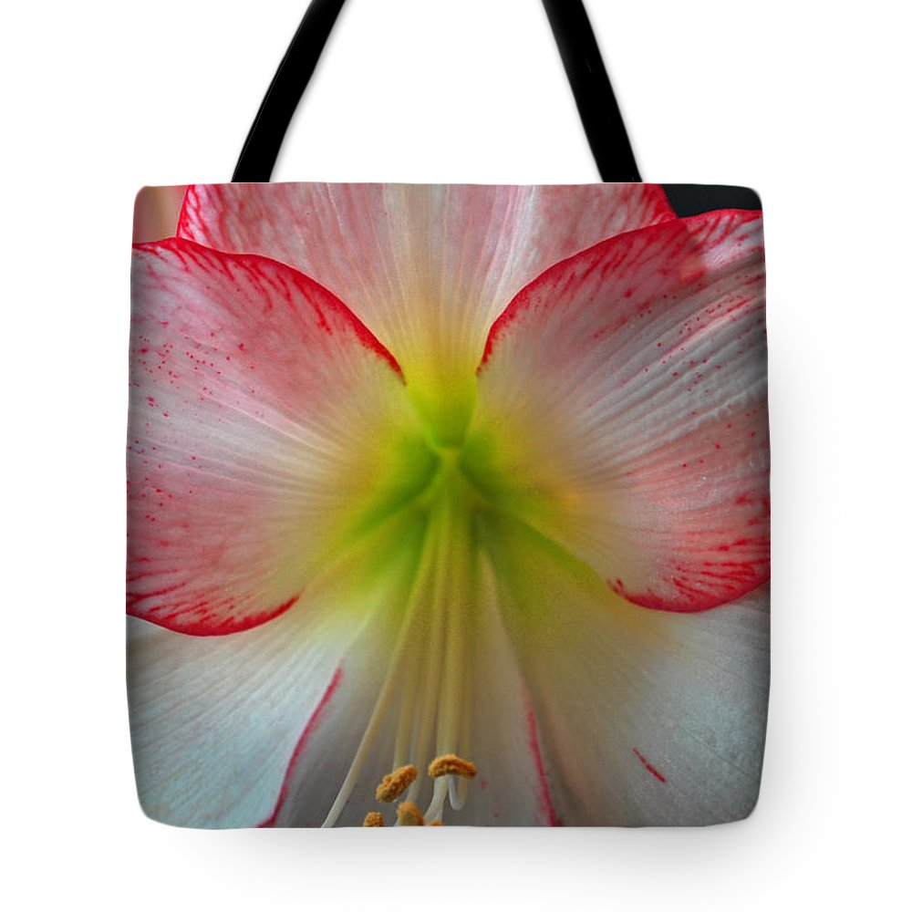 Flowers Tote Bag featuring the photograph Spring Forth by Donna Shahan