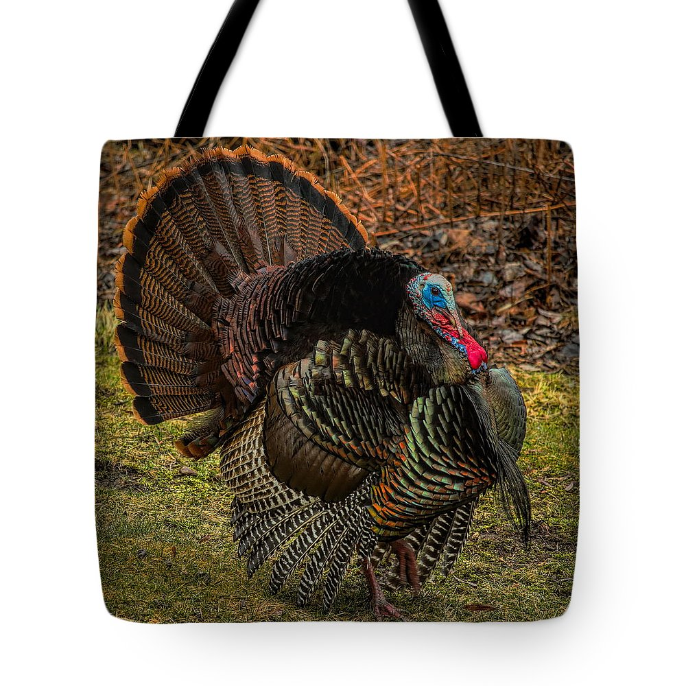 Dale Kauzlaric Tote Bag featuring the photograph Spring Gobbler by Dale Kauzlaric