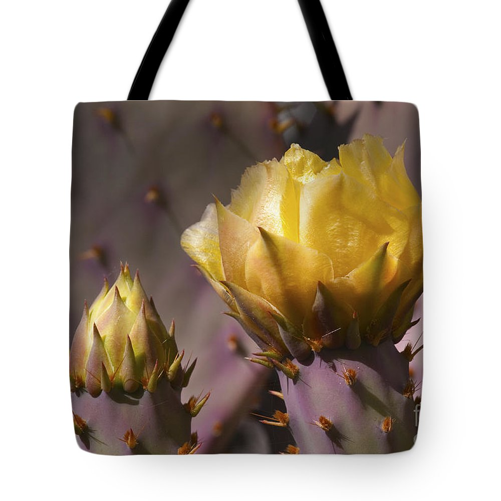 Southwest Tote Bag featuring the photograph Spring In The Desert by Sandra Bronstein