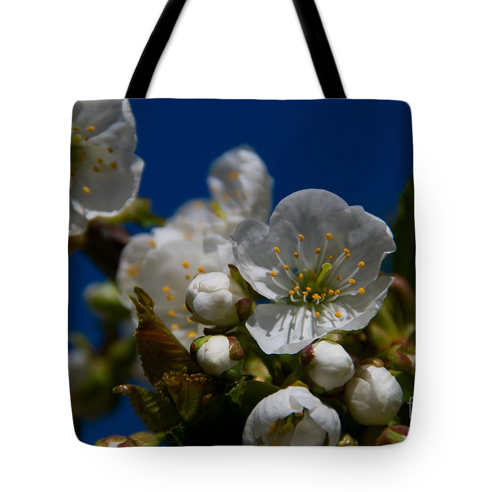 Beauty In Nature Tote Bag featuring the photograph Spring Is Here by Venetta Archer