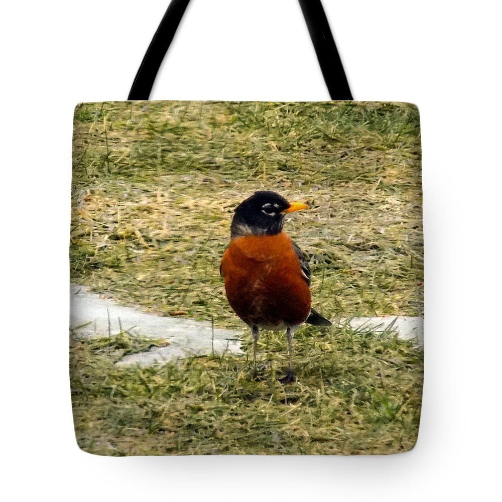 Robin Tote Bag featuring the photograph Spring Is Here by William Tasker