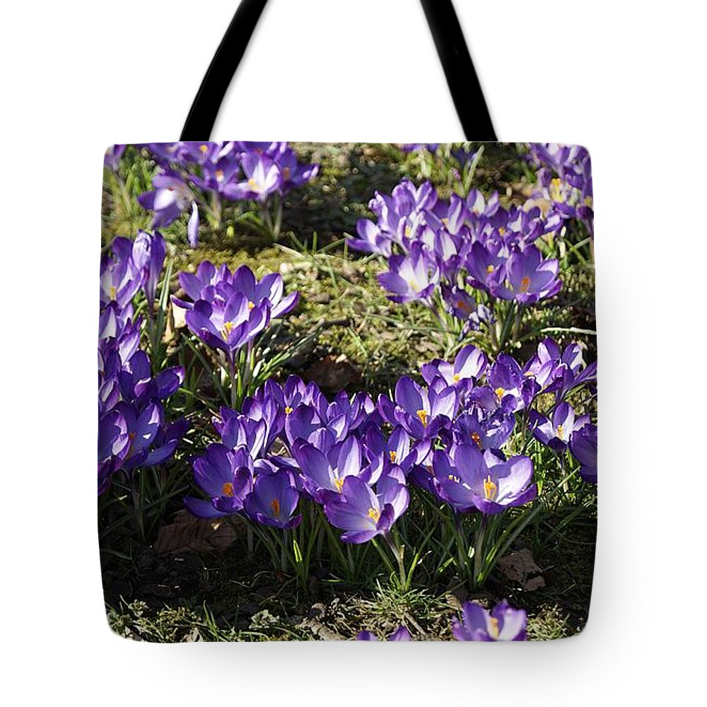 Spring Crocus Tote Bag featuring the photograph Spring by LDS Dya