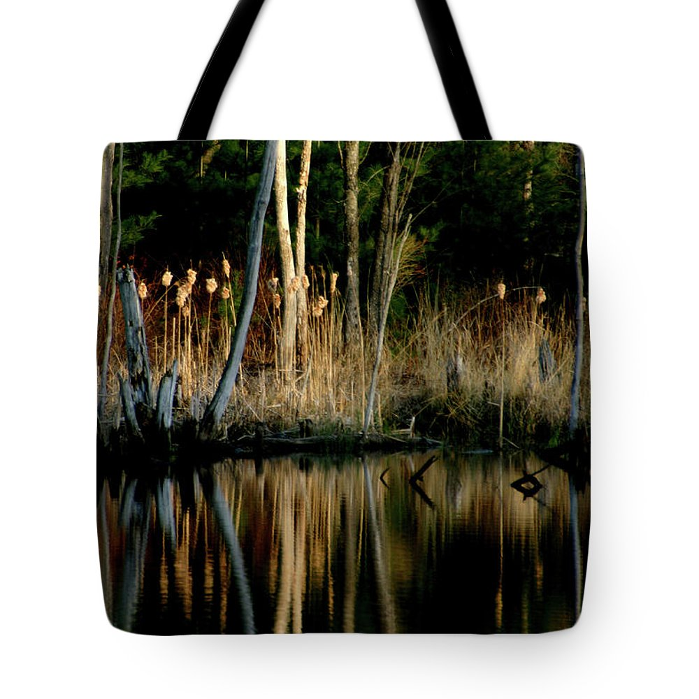 Cattails Tote Bag featuring the photograph Spring Reflections by Wayne King
