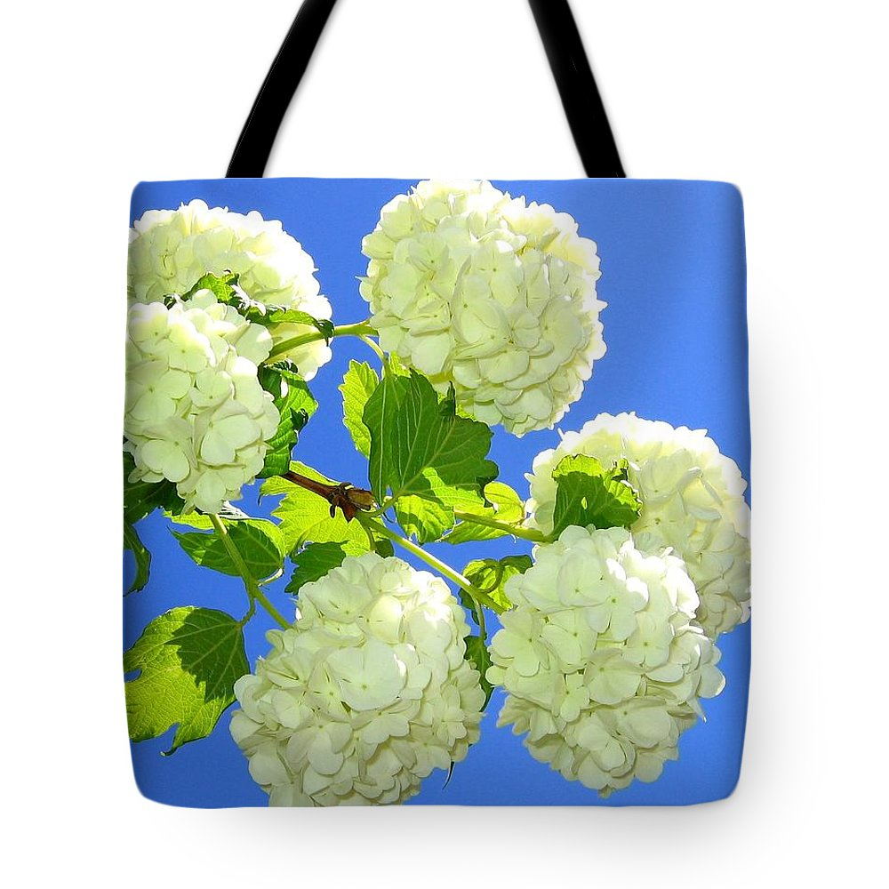 Snowballs Tote Bag featuring the photograph Spring Snowballs by Will Borden