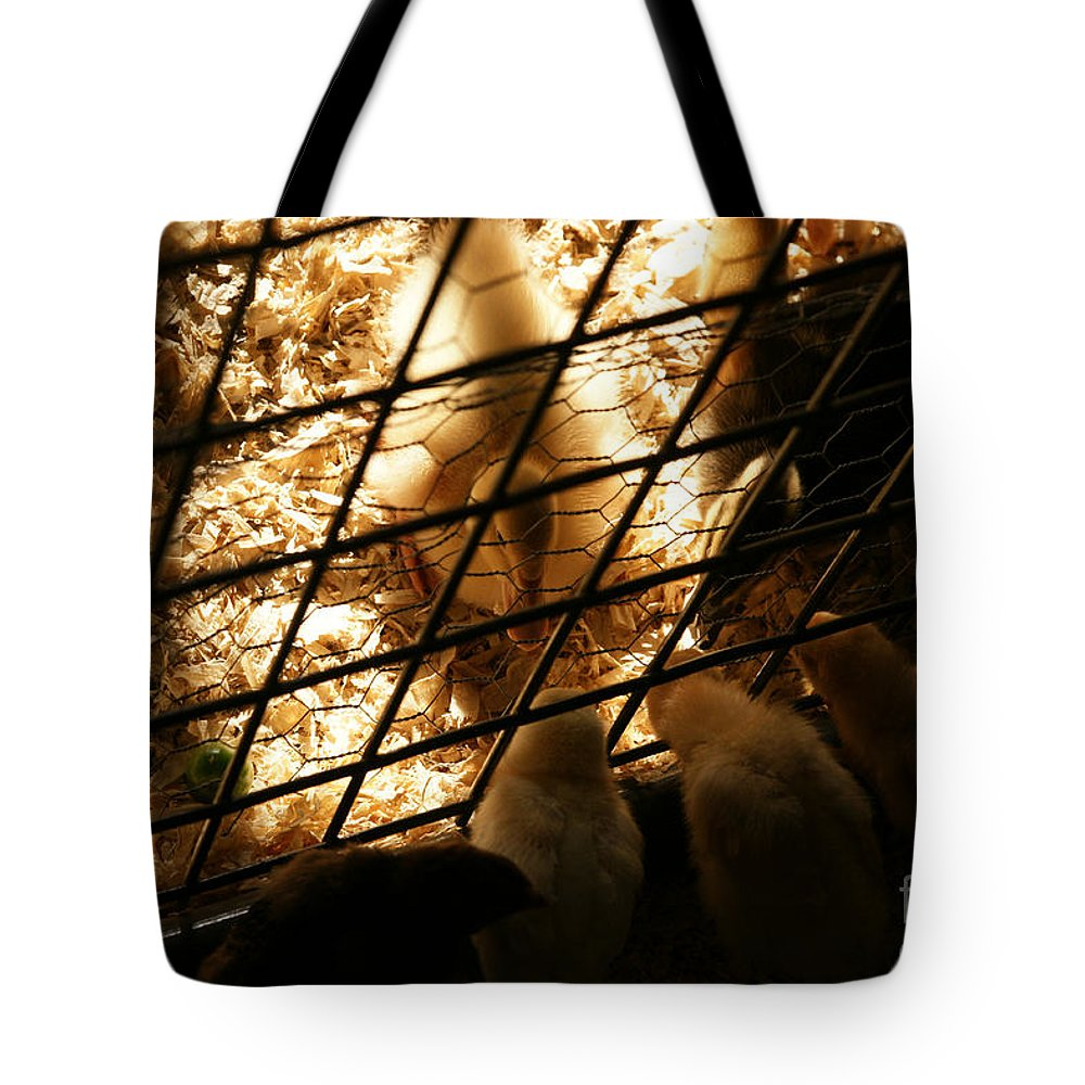 Duck Tote Bag featuring the photograph Spring Social by Linda Shafer
